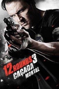 12 Rounds 3: Lockdown (2015) BluRay Dual Audio [Hindi 2.0 & English] 1080p 720p & 480p