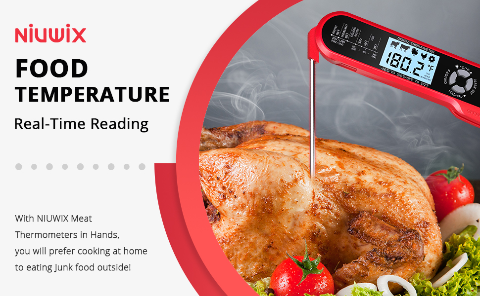 With Meat Thermometers in Hands, you will prefer cooking at home to eating Junk food outside!