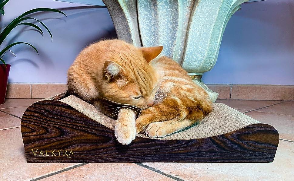 Gatto rosso che dorme dolcemente arrotolato grazie alla cerva del tiragraffi