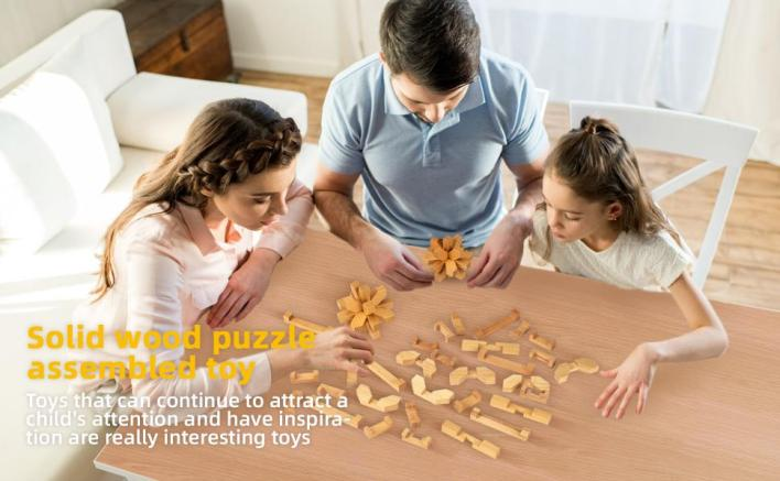Wood Puzzle Assembled Toy Wooden Brain Teaser Puzzle Toy for Kids and Adults  Brain Teaser Puzzle