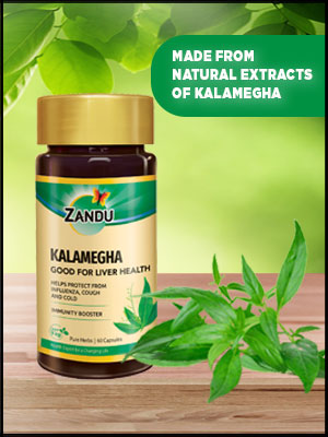 Kalamegha, is a specialist for fighting illnesses as well as boosting immunity.