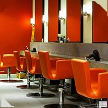 Salon Hair Loss