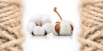 Natural Cotton & Jute