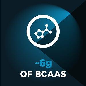 High BCAA content