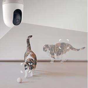 nooie Wifi Long Range transmission protection  two way talk talking room motion pan Smart