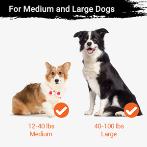 For Medium and Large Dogs