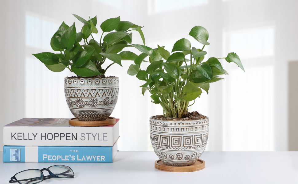 EPGardening planter perfect suitable decorate your home