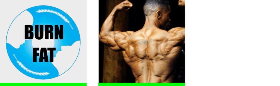thermogenic fat burner, belly fat burner, appetite suppressant, slimming supplement, diet pills