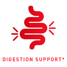 digestion support image
