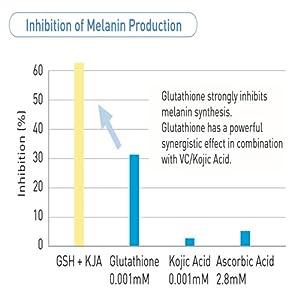 Inhibition of Melanin Production