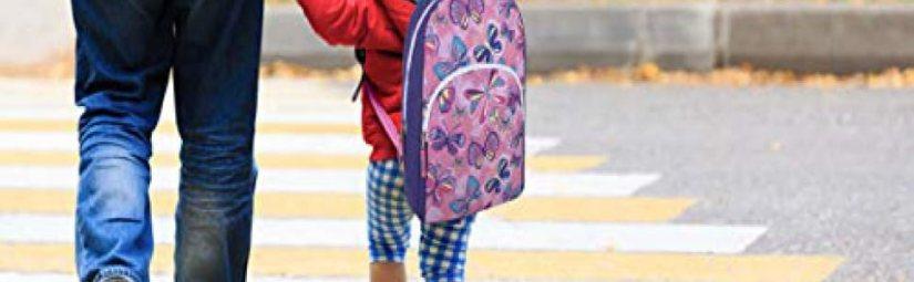 24 pack backpack, wholesale backpacks for kids bulk backpacks for preschool elementary school