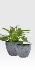rock grey flower pots