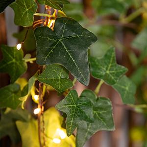 lifelike ivy