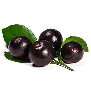 acai berry detox colon cleanse