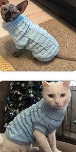 Kitten clothes