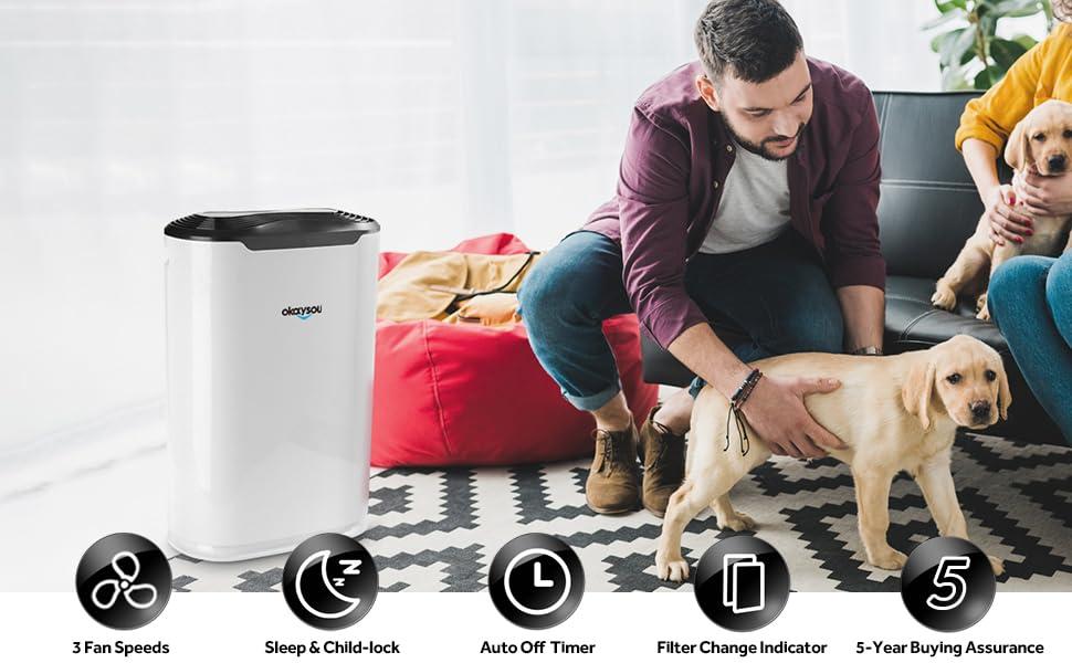 air purifiers pet