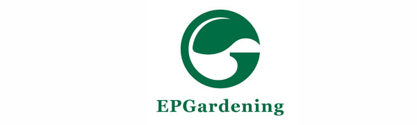 EPGardenging succulent planter meet your need for plants