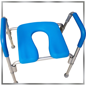 full image of ultimate raised toilet seat