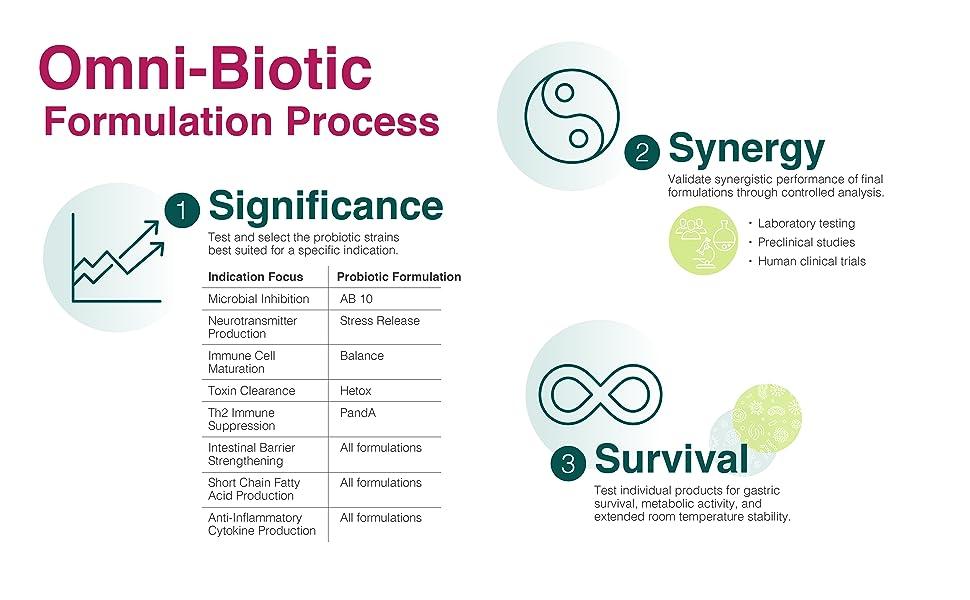 Formulation Process