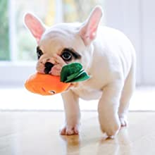 small puppy toys