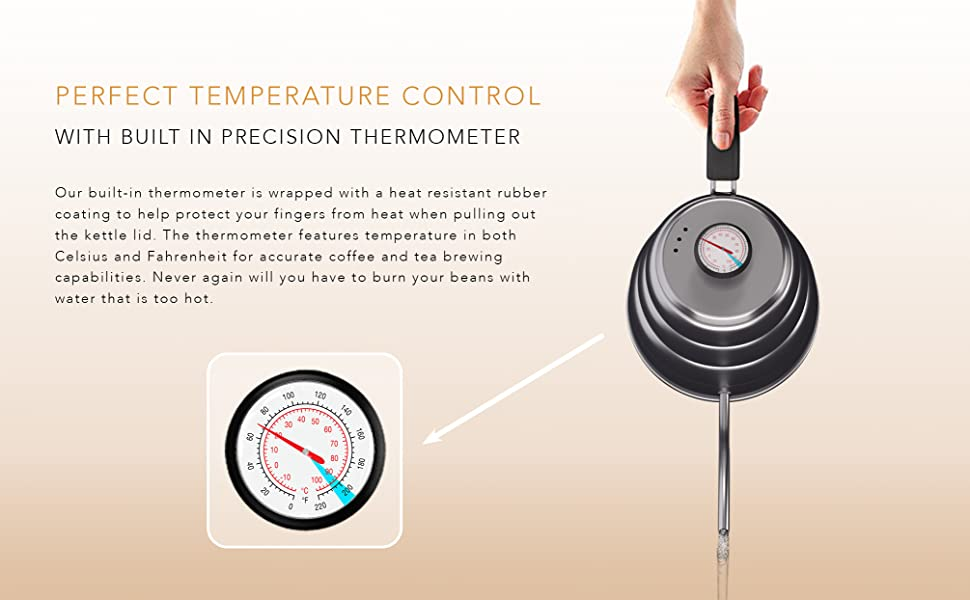 built-in thermometer water temperature kettle