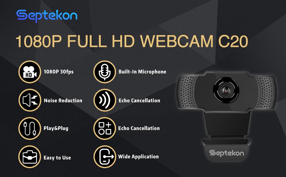 Webcam C20