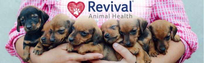 revival animal health RAH breeders