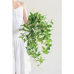 centerpiece greenery