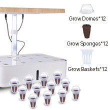 Hydroponics Growing with led grow lights