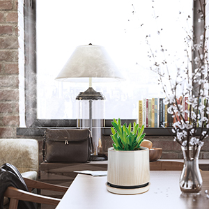 planter pots for indoor plants