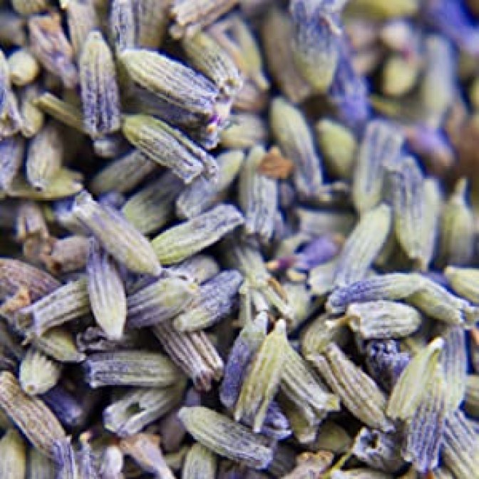 Lavodia Bio Lavendelblüten Lavendelsäckchen Lavendelsamen Lavendelspray Schlaf Sleep Well Lavendelöl
