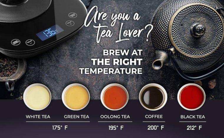 digital kettle temperature regulation heater water warmer