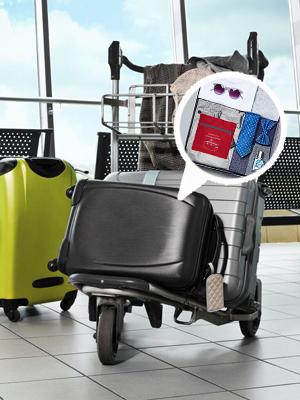 "30"" Luggage Duffle Bag"