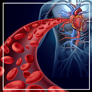 Haemoglobin, improve blood, blood, iron