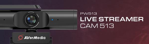 AverMedia PW513 Webcam