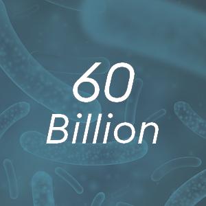 60 billion CFUs