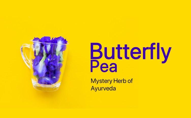 Butterfly Pea, Blue Pea, Herbal Tea, Tisane, Blue Tea, Purple Tea, Caffeine Free, Organic,Clitoria
