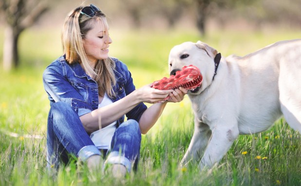 Dog toys for aggressive chewer large breed