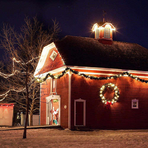 Christmas lighting using led strip light