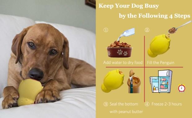 kong stuffable interactive dog toys
