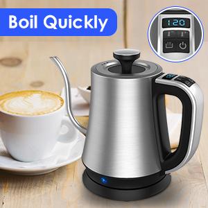 electric temperature control kettle
