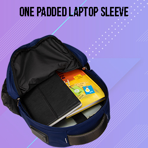 Padded Laptop Section