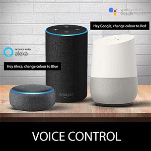 Cololight Voice Control