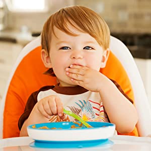Toddler plate, suction plates