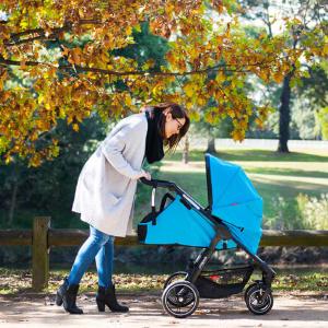 lie flat parent face cocoon single stroller