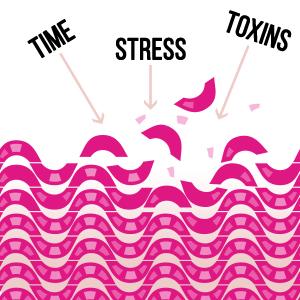 collagen;supplements;hair;skin;nails;vitamins;benefits;supplement;acne;vitamin;probiotics;daily;that