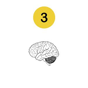 step 3 brain associates stimulus bad habit aversion