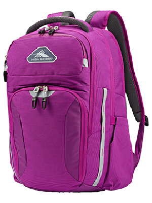 15.6 17 17-inch 17.2 17.3 17.3inch 17.4 17.5 17.5in 17.6 17in 17inch in inch best bookbag business
