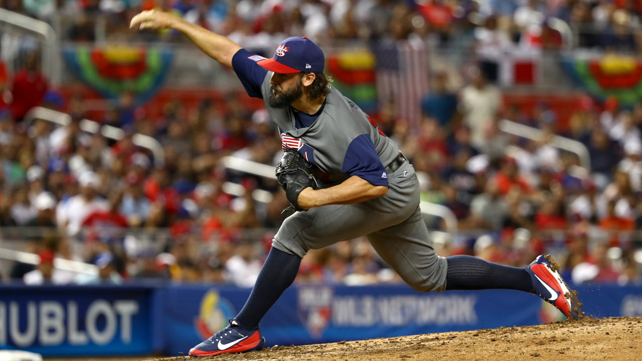 Image result for tanner roark team usa
