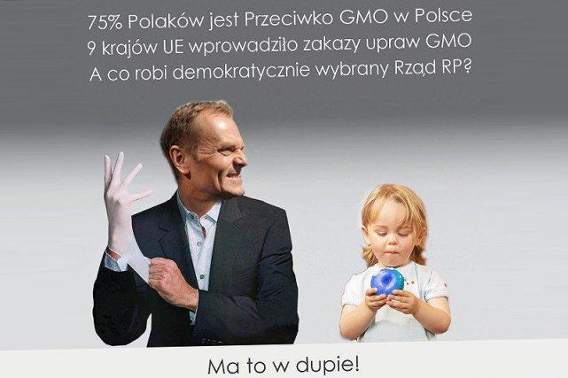 Polacy protestują w internecie przeciwko decyzji Sejmu i rządu w sprawie żywności GMO